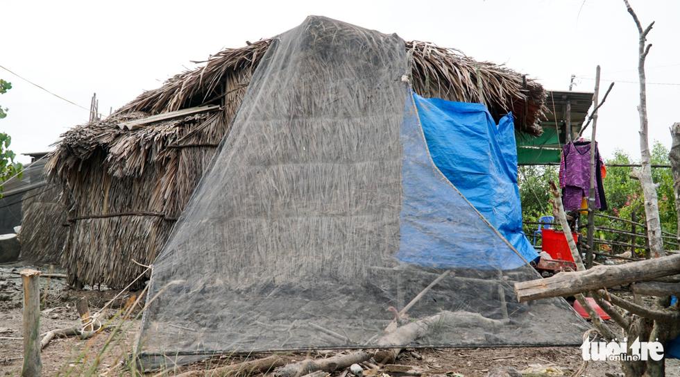 Dân Cà Mau lấy lưới, ống nước neo nhà chống bão - Ảnh 13.