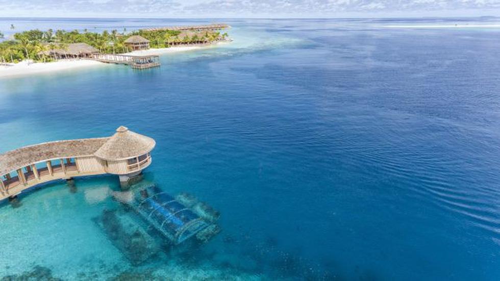 Ăn ngon tại nhà hàng dưới nước lớn nhất thế giới - Ảnh 13.