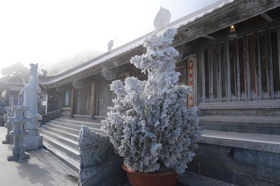Mưa tuyết phủ trắng đỉnh Fansipan đẹp như cổ tích - Ảnh 13.