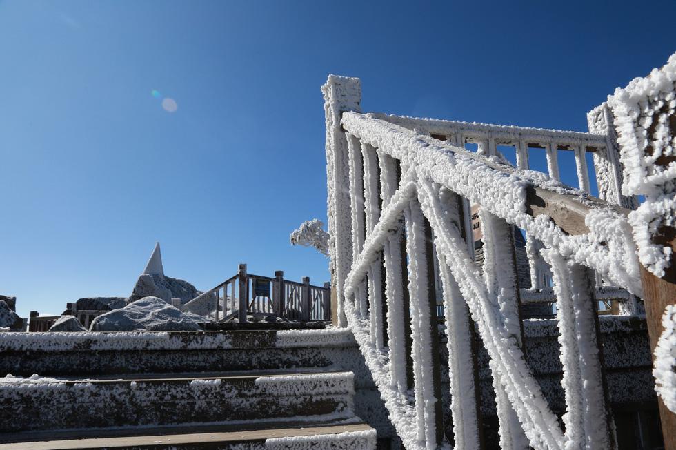 Mưa tuyết phủ trắng đỉnh Fansipan đẹp như cổ tích - Ảnh 27.