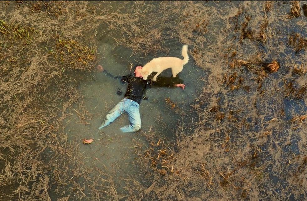 10 phim Việt đáng quên nhất năm 2017 - Ảnh 24.
