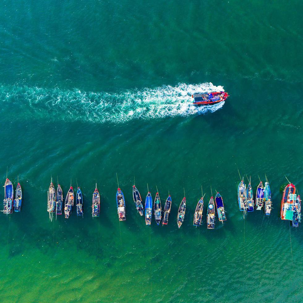 Ngắm rừng vàng biển bạc Việt Nam tại Phú Quốc - Ảnh 1.
