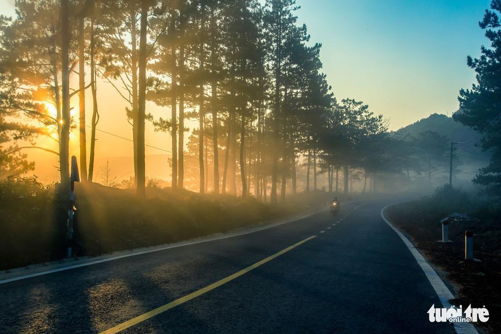 Bộ ảnh Đà Lạt mơ màng trong mùa nắng lạnh đẹp nhất năm - Ảnh 13.