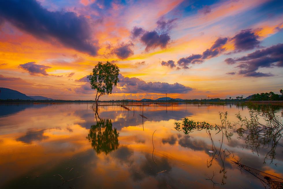 Đến xứ sở cây thốt nốt Tịnh Biên mùa nước nổi - Ảnh 1.