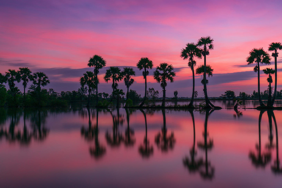 Đến xứ sở cây thốt nốt Tịnh Biên mùa nước nổi - Ảnh 3.