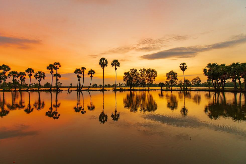 Đến xứ sở cây thốt nốt Tịnh Biên mùa nước nổi - Ảnh 4.