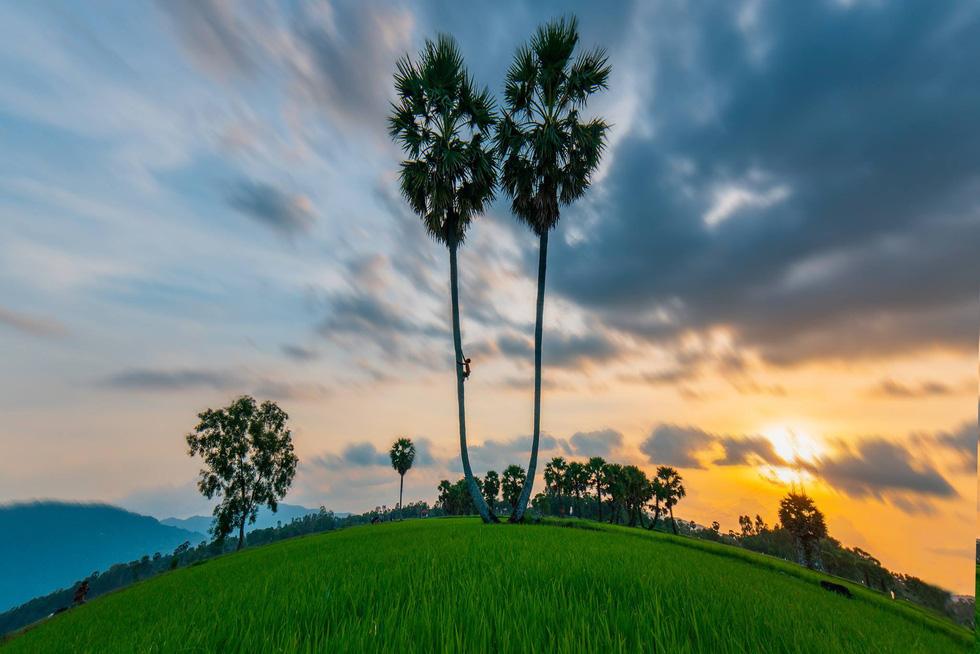 Đến xứ sở cây thốt nốt Tịnh Biên mùa nước nổi - Ảnh 5.