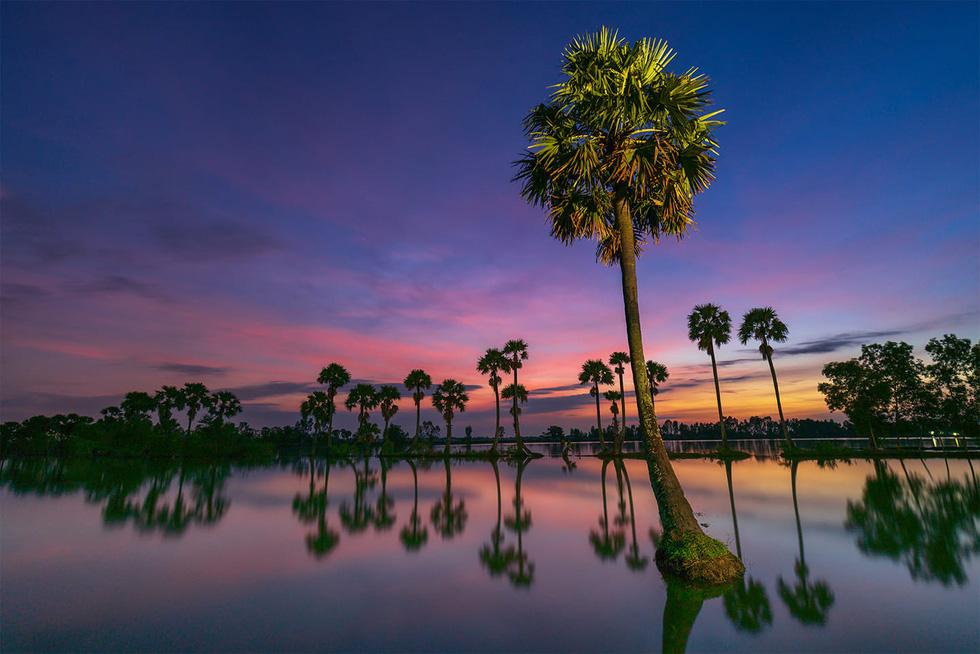 Đến xứ sở cây thốt nốt Tịnh Biên mùa nước nổi - Ảnh 10.