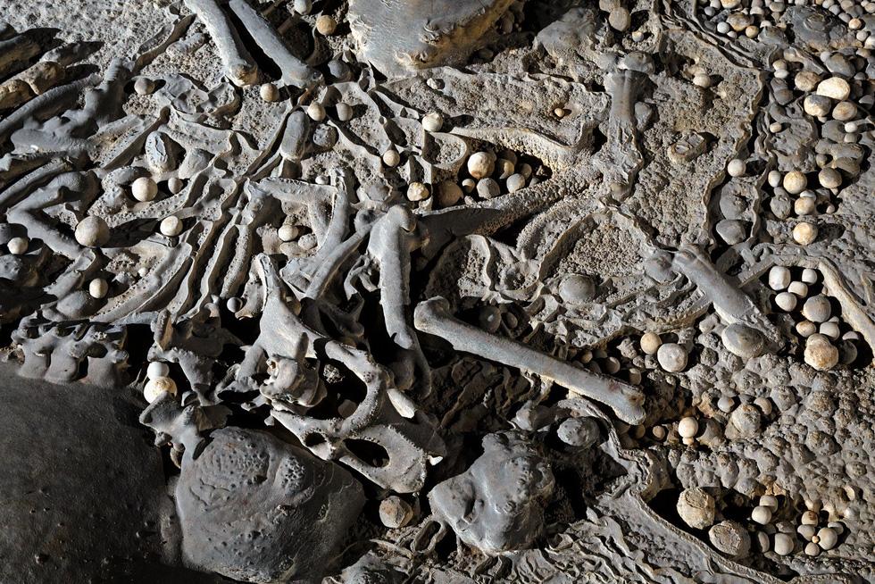 Thế giới kỳ bí trong hệ thống hang động Phong Nha - Kẻ Bàng - Ảnh 12.