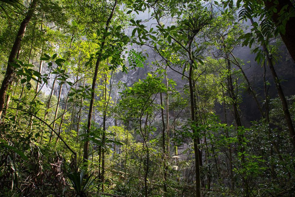 Thế giới kỳ bí trong hệ thống hang động Phong Nha - Kẻ Bàng - Ảnh 15.