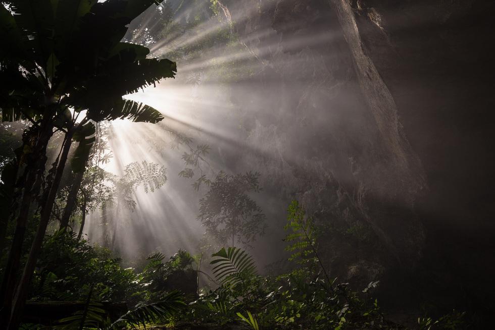 Thế giới kỳ bí trong hệ thống hang động Phong Nha - Kẻ Bàng - Ảnh 16.