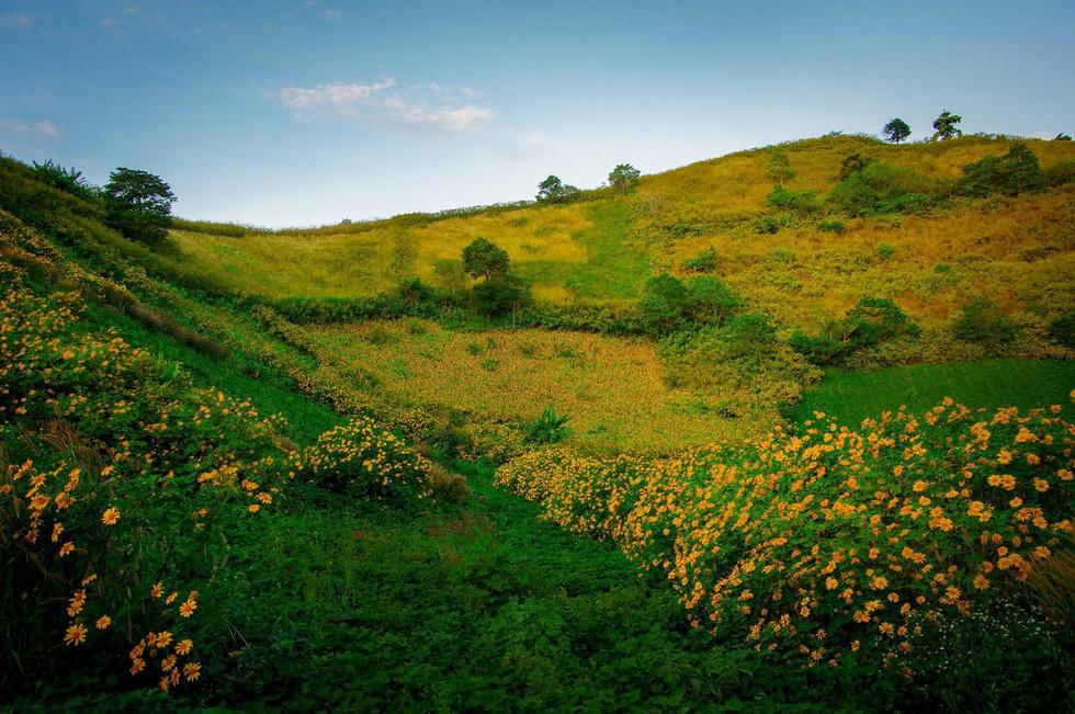 Lễ hội Hoa dã quỳ khai mạc trên núi lửa Chư Đăng Ya - Ảnh 1.
