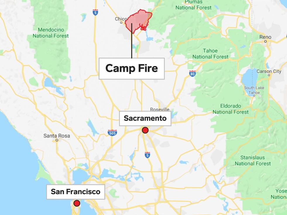 Đáng thương cảnh động vật cháy xém sau cháy rừng ở California - Ảnh 16.