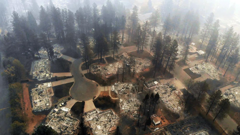 Đáng thương cảnh động vật cháy xém sau cháy rừng ở California - Ảnh 3.