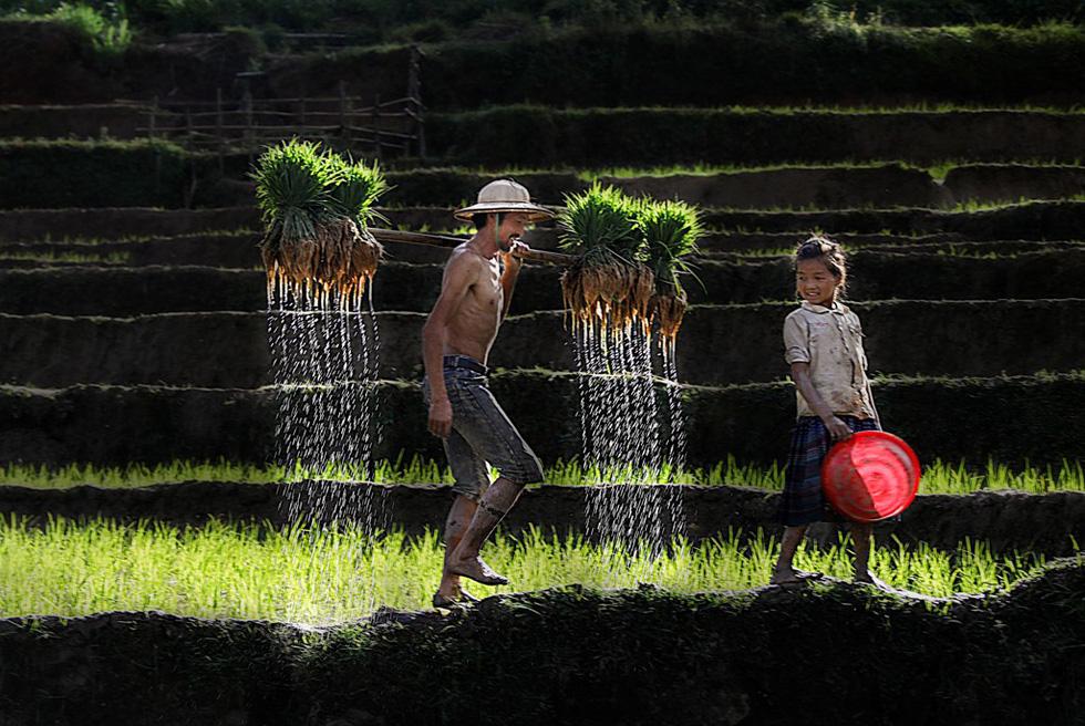 Ngây ngất với thiên nhiên và đời sống người Việt  qua ảnh - Ảnh 8.