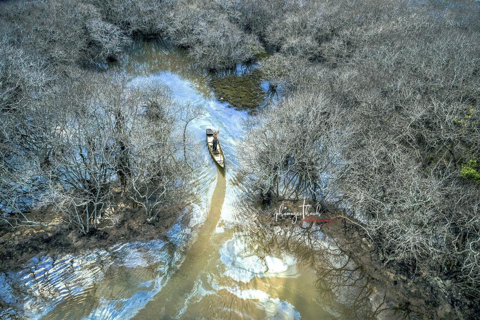 Đông về, rừng Rú Chá đẹp ma mị  - Ảnh 3.