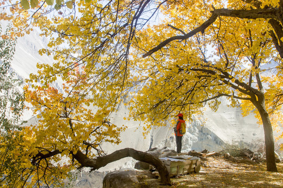 Huyền thoại mùa thu ở Hunza - miền Bắc Pakistan - Ảnh 1.