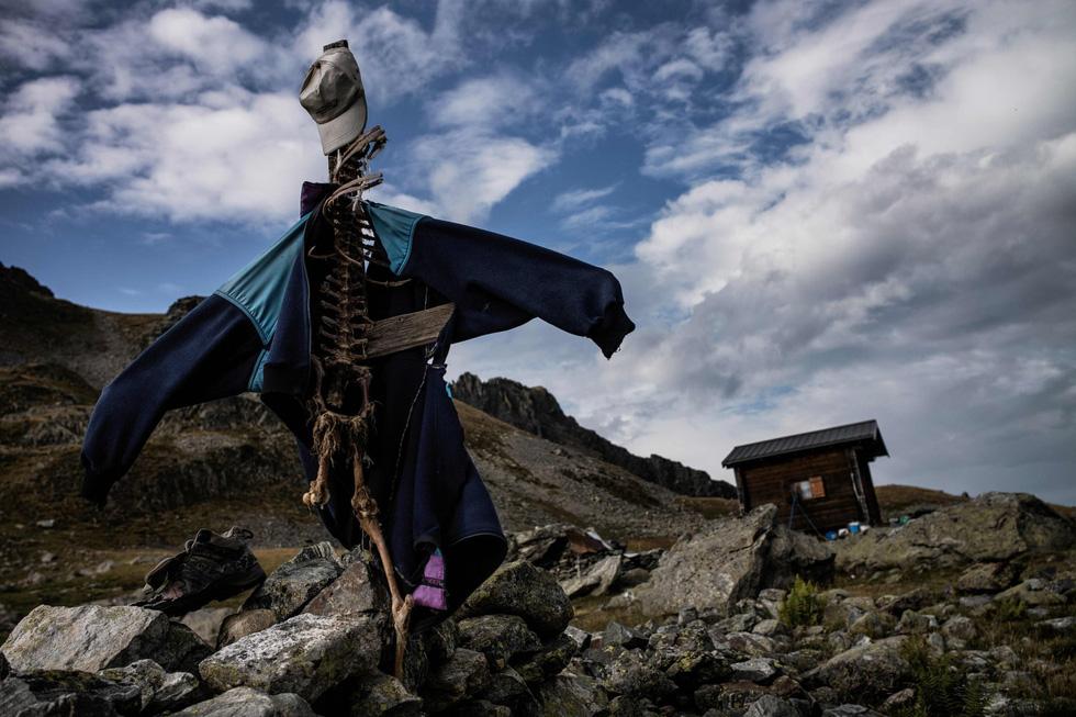 Theo chân người chăn cừu trên vùng đồng cỏ núi Alps - Ảnh 5.