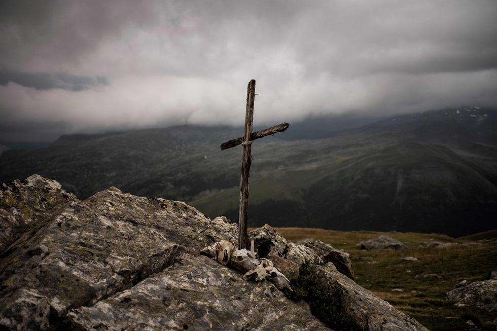 Theo chân người chăn cừu trên vùng đồng cỏ núi Alps - Ảnh 6.