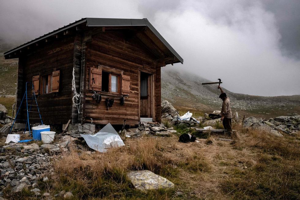 Theo chân người chăn cừu trên vùng đồng cỏ núi Alps - Ảnh 7.