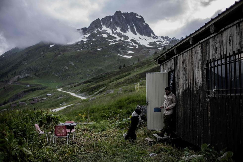 Theo chân người chăn cừu trên vùng đồng cỏ núi Alps - Ảnh 9.