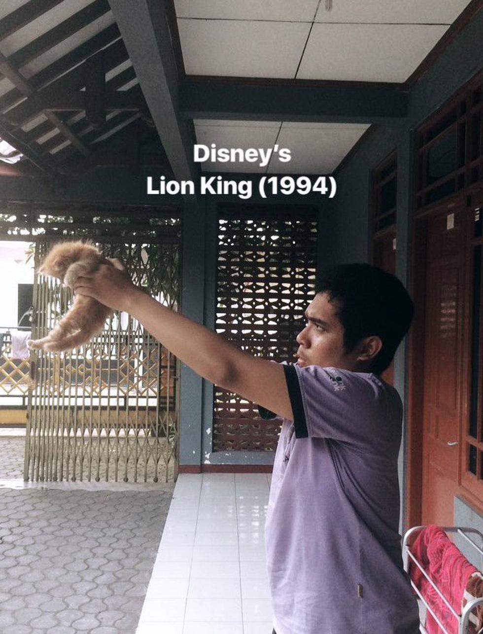Quá mê The Lion King, khán giả chế ảnh Simba phiên bản chó mèo - Ảnh 14.