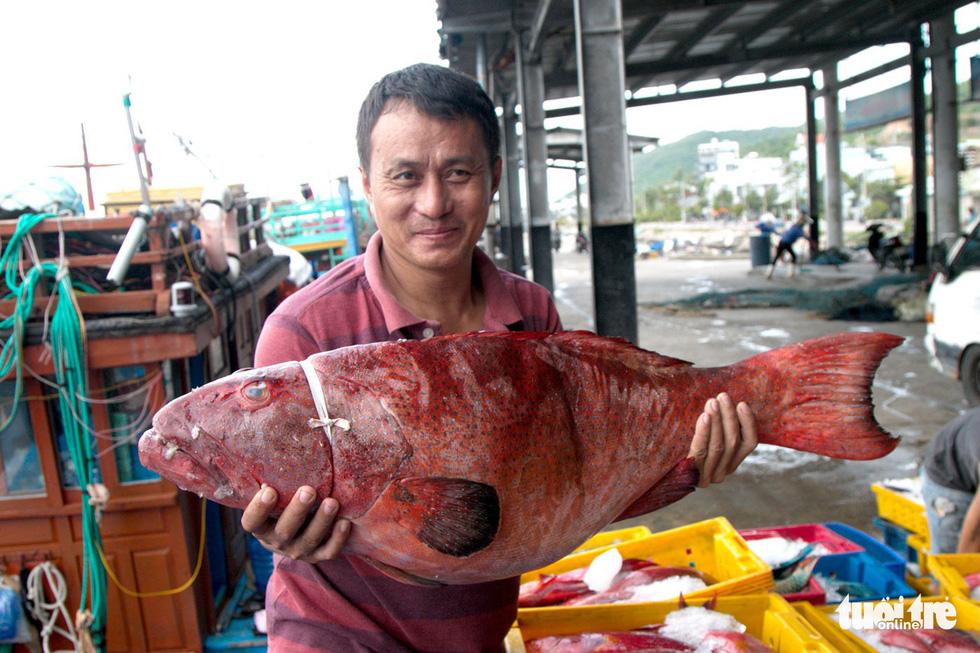 Đánh cá xa bờ: mưu sinh trên đầu ngọn sóng - Ảnh 1.