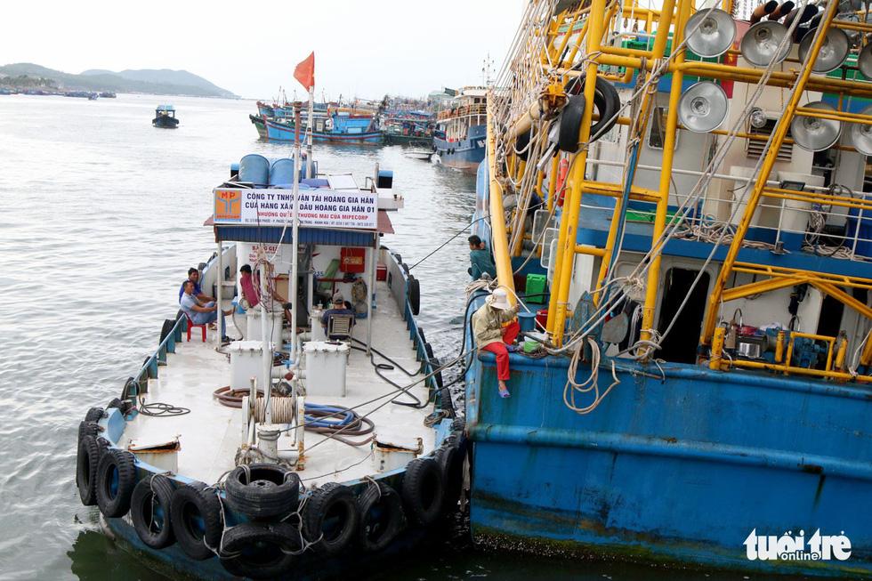 Đánh cá xa bờ: mưu sinh trên đầu ngọn sóng - Ảnh 2.