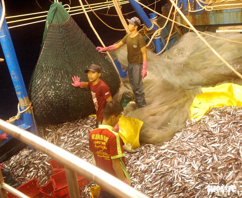 Đánh cá xa bờ: mưu sinh trên đầu ngọn sóng - Ảnh 7.