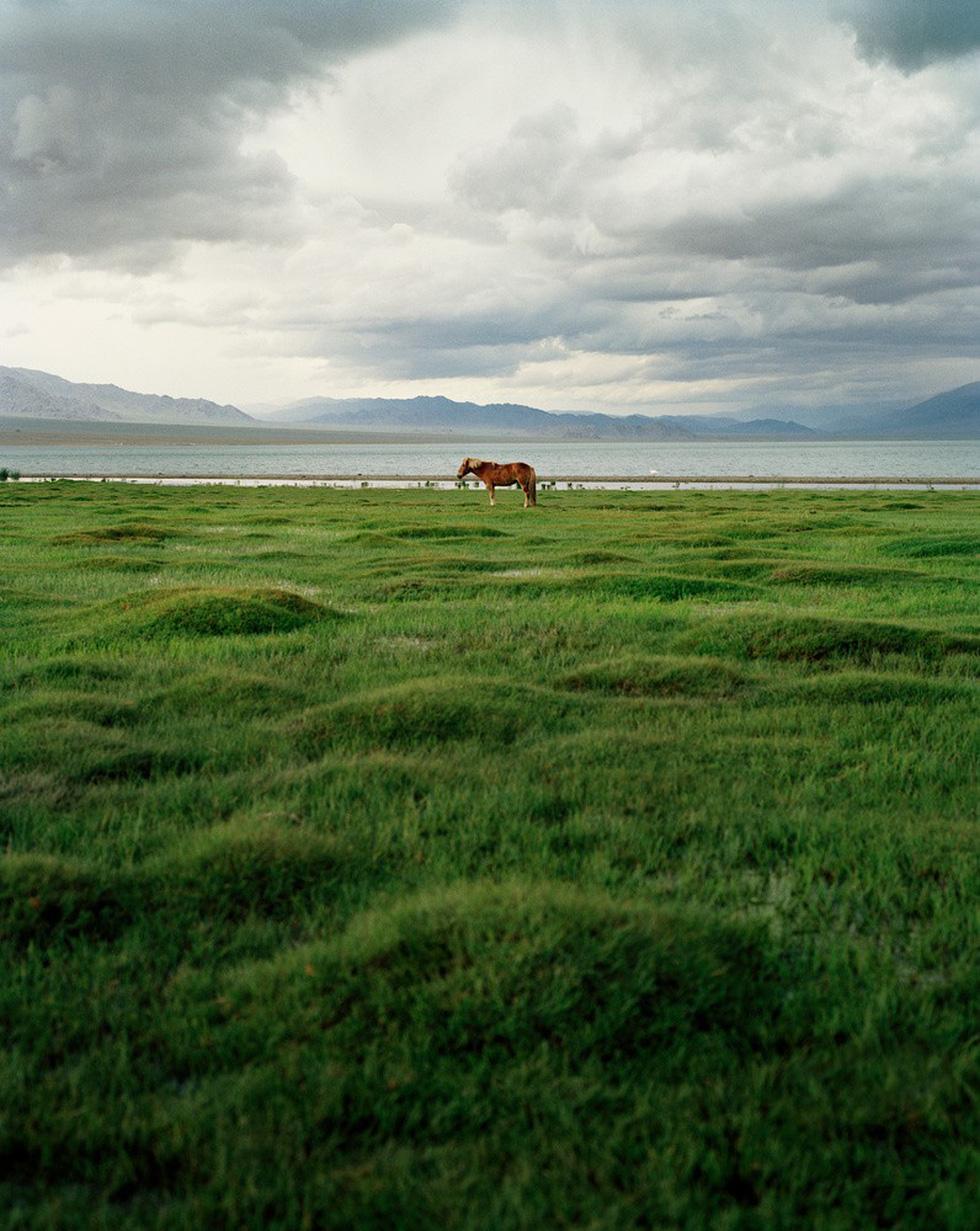Vẻ đẹp tĩnh lặng đáng kinh ngạc trên thảo nguyên Mông Cổ - Ảnh 3.