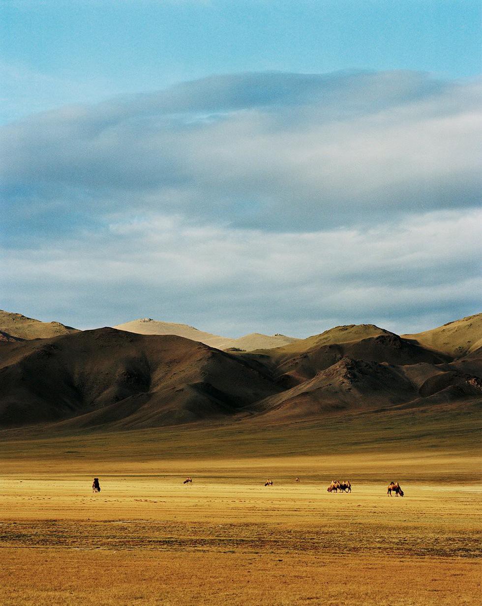 Vẻ đẹp tĩnh lặng đáng kinh ngạc trên thảo nguyên Mông Cổ - Ảnh 8.