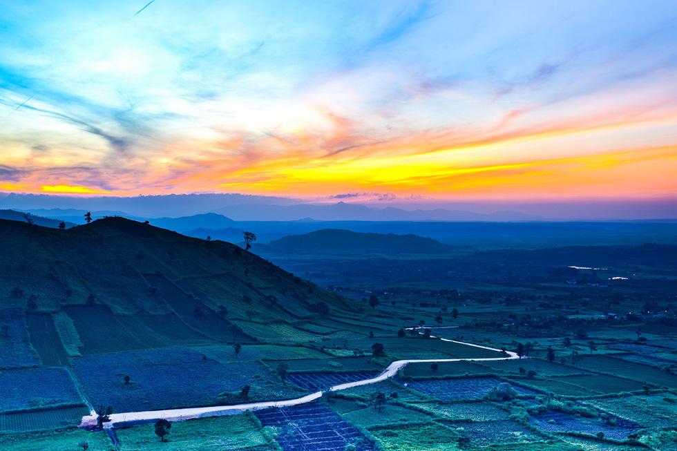 Thảm dã quỳ trên núi lửa Chư Đăng Ya hùng vĩ - Ảnh 1.