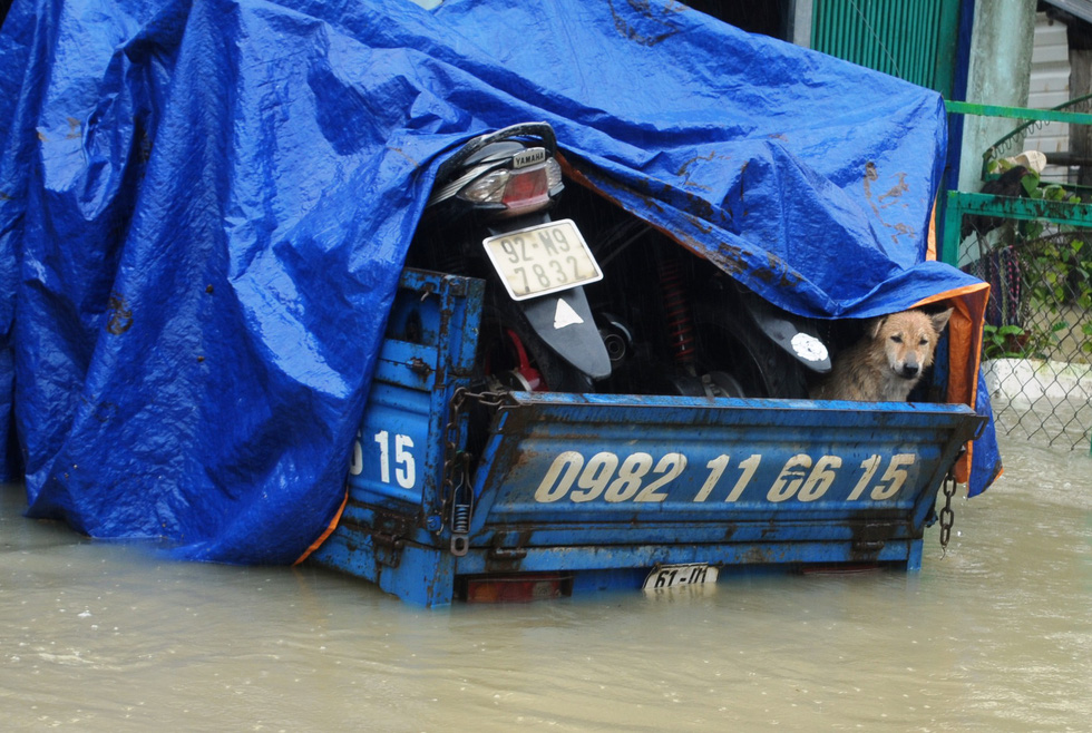 Nước dâng cao, bộ đội biên phòng vượt lũ cứu dân - Ảnh 11.