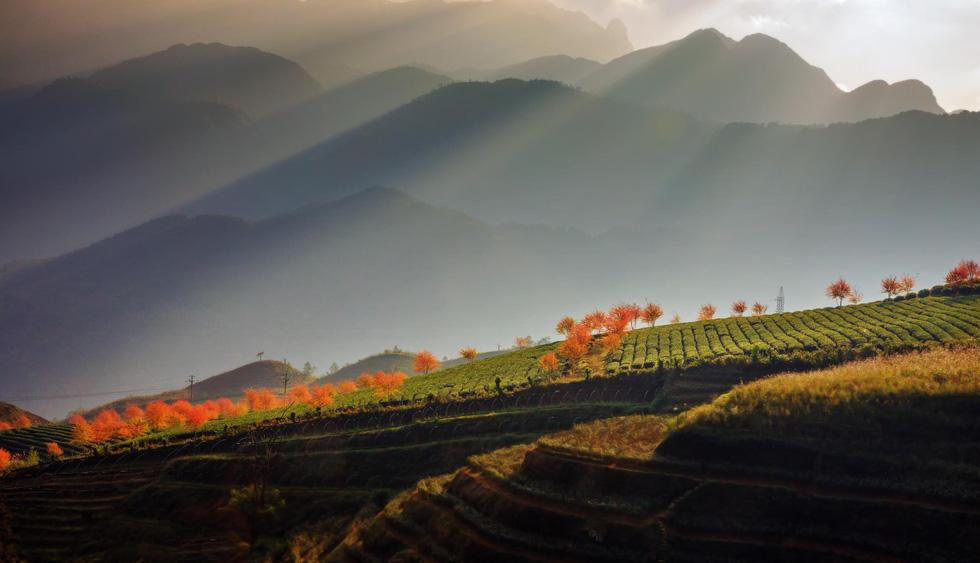 Hoàng Liên Sơn - điểm du lịch đáng đến 2019 của National Geographic - Ảnh 11.