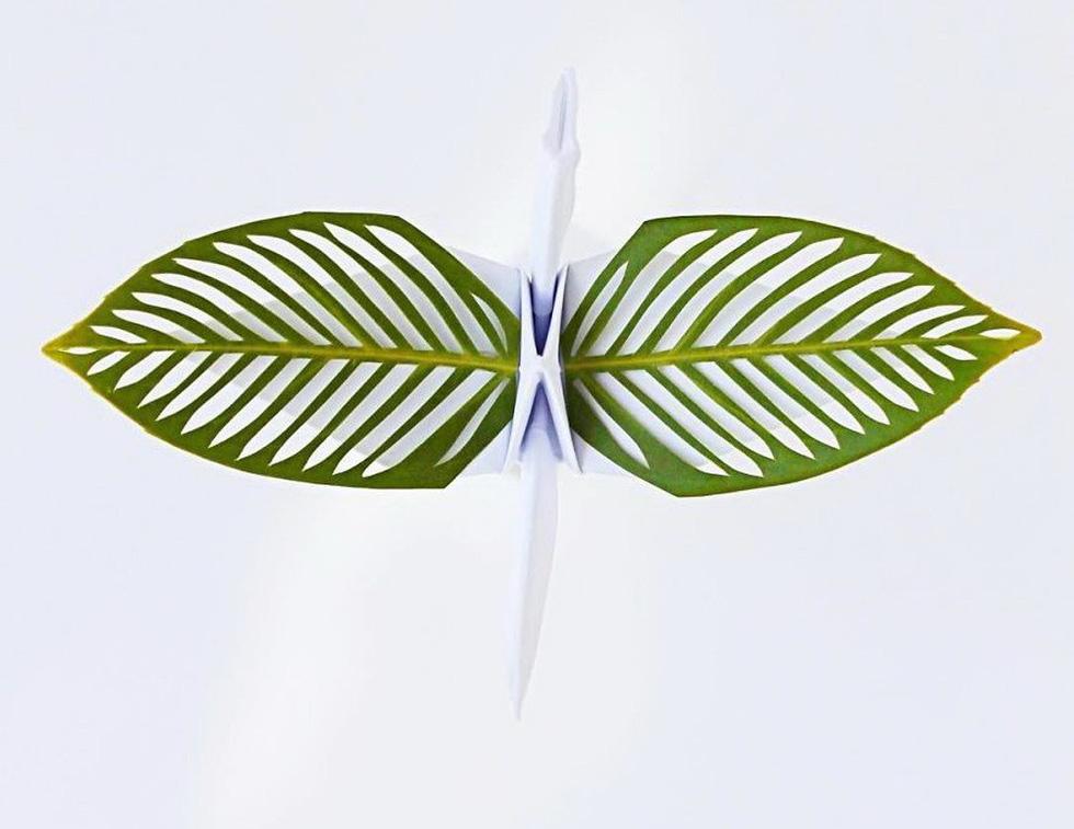 Ngắm những chú hạc giấy origami đẹp ngỡ ngàng - Ảnh 8.