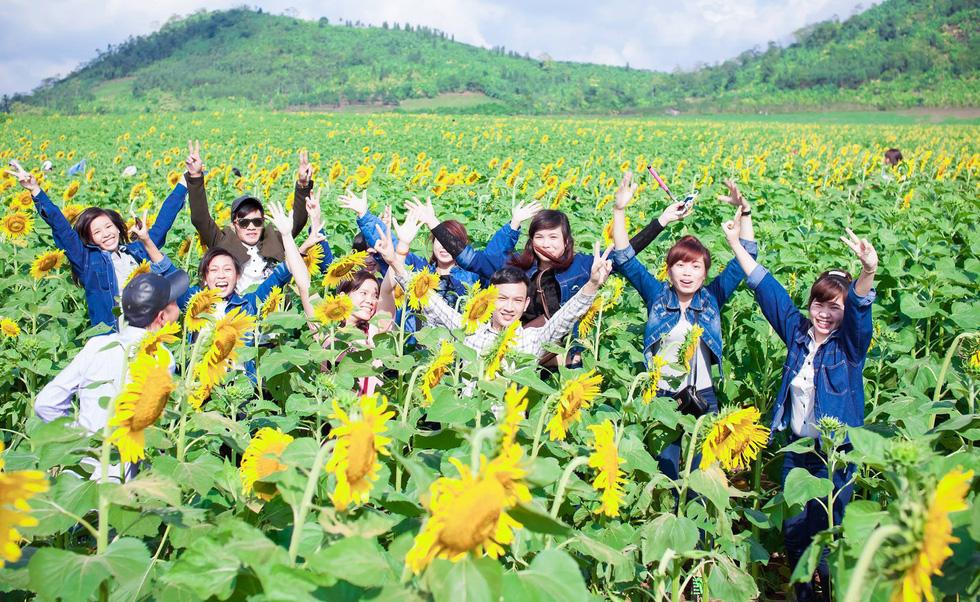 Lạc bước giữa cánh đồng hoa hướng dương ở Nghệ An - Ảnh 8.