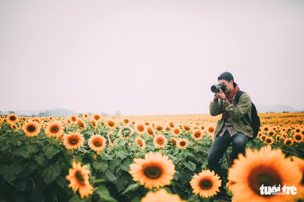 Lạc bước giữa cánh đồng hoa hướng dương ở Nghệ An - Ảnh 10.