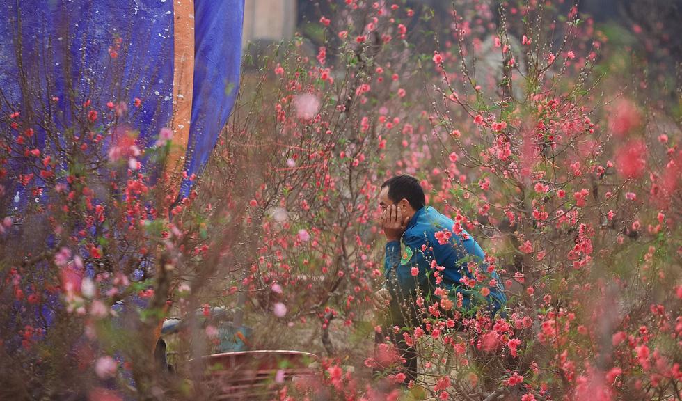 Phút chùng lòng cuối năm, rưng rưng nhớ những mùa hoa Hà Nội - Ảnh 2.