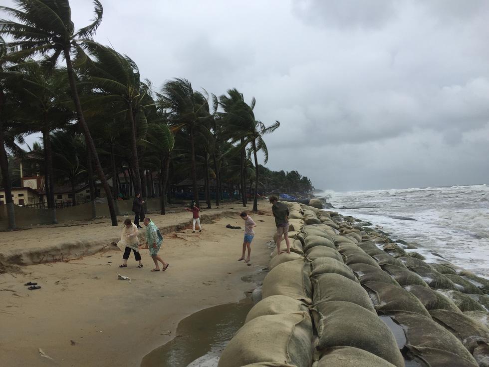 Bờ biển Cửa Đại lại tan hoang trước sóng biển - Ảnh 3.