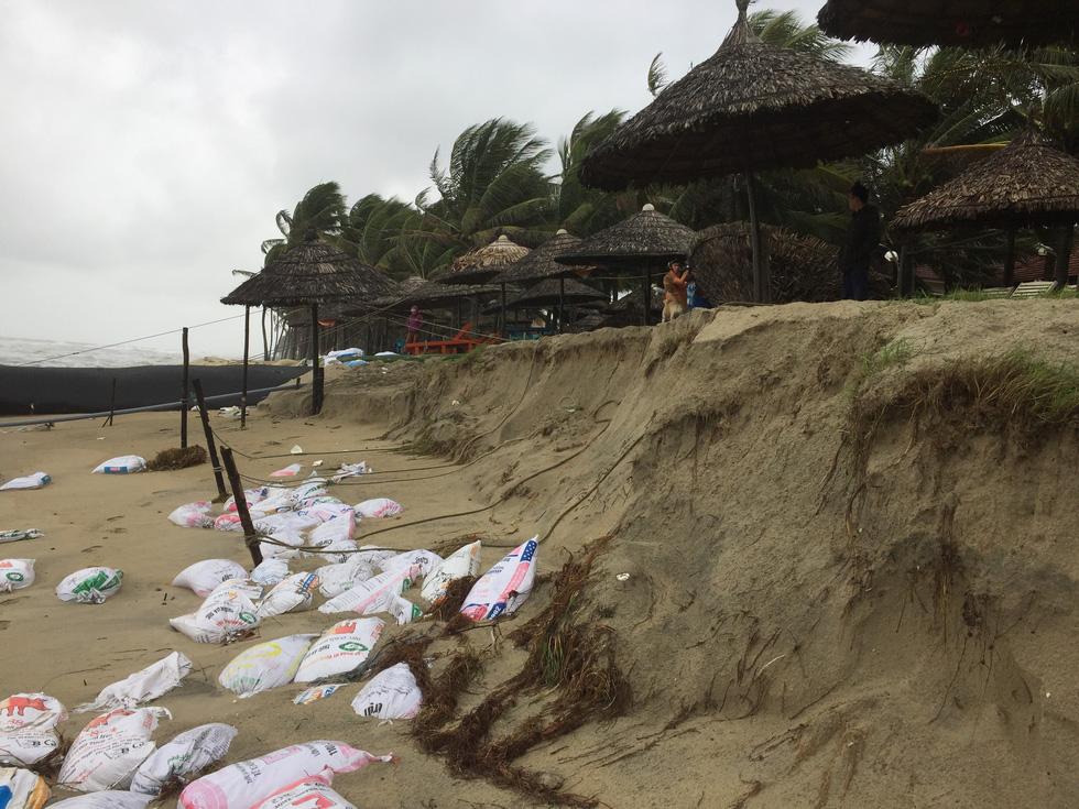 Bờ biển Cửa Đại lại tan hoang trước sóng biển - Ảnh 6.