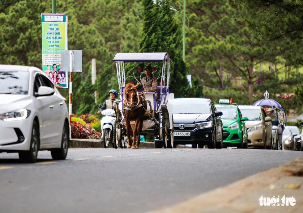 Khu trung tâm TP Đà Lạt tràn ngập xe du lịch - Ảnh 8.