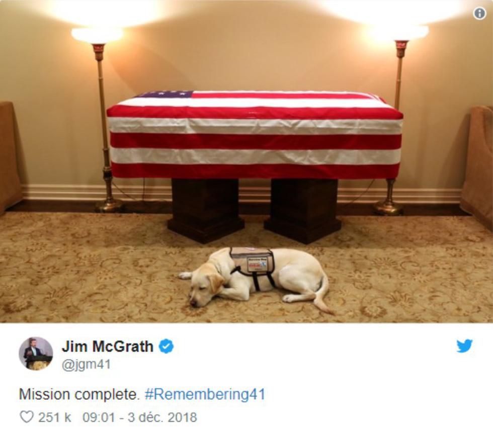 Xúc động hình ảnh chú chó Sully trung thành của ông Bush 'cha' - Ảnh 2.