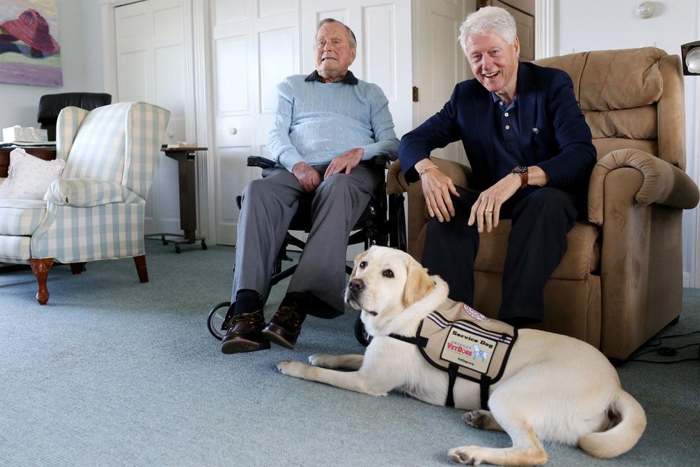 Xúc động hình ảnh chú chó Sully trung thành của ông Bush 'cha' - Ảnh 10.