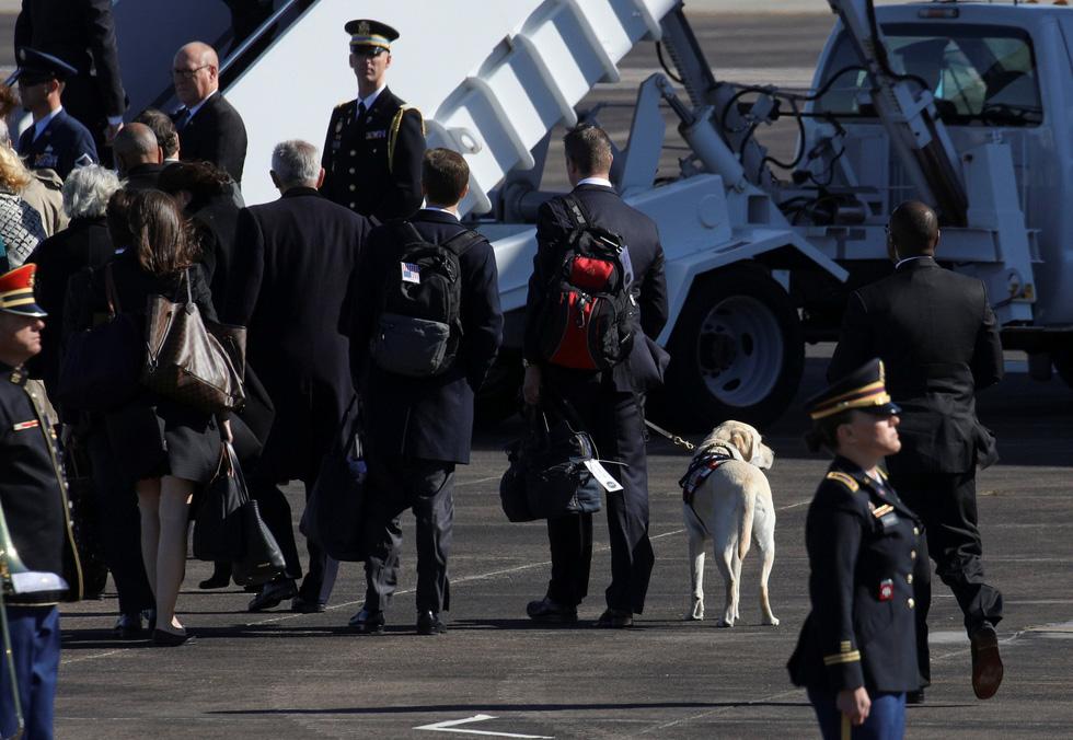 Xúc động hình ảnh chú chó Sully trung thành của ông Bush 'cha' - Ảnh 5.