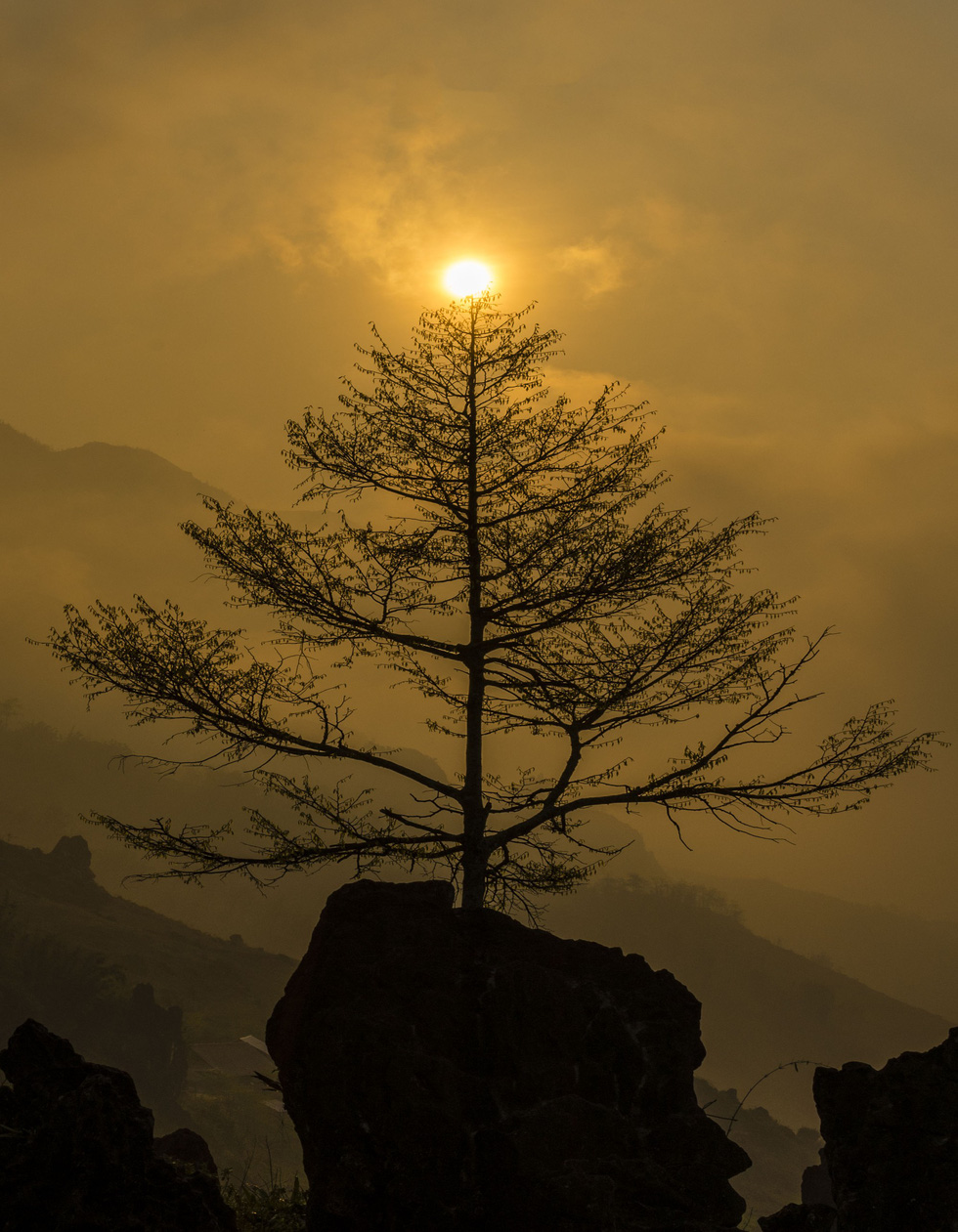 Đến núi Hàm Rồng săn mây luồn Sa Pa - Ảnh 6.