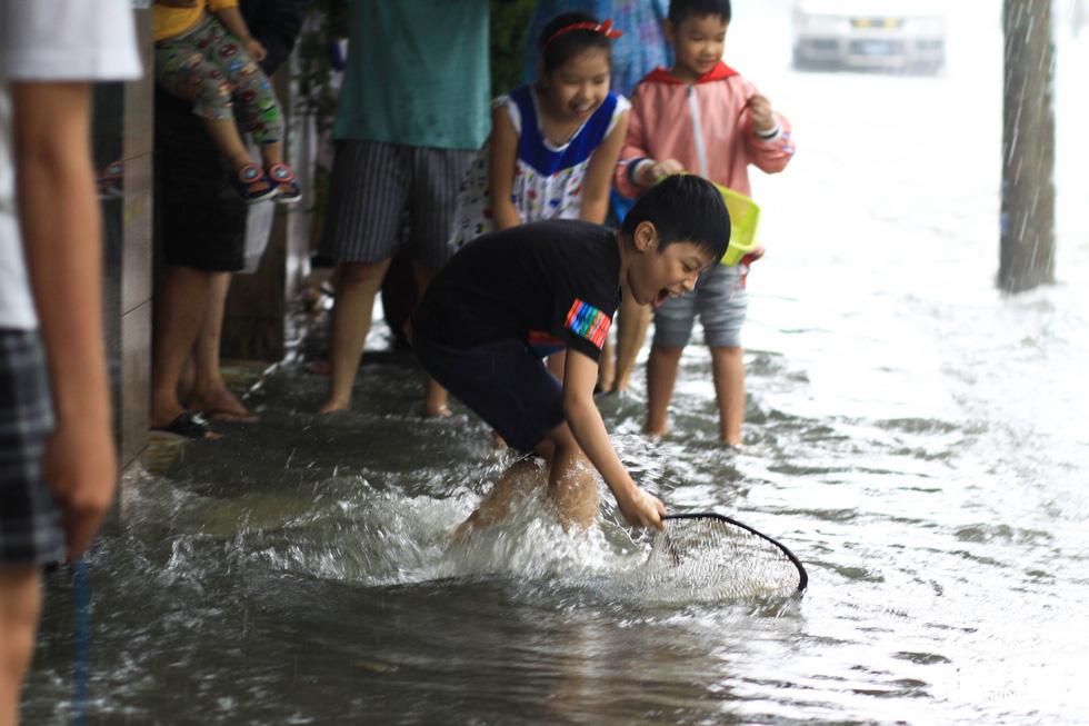 Sau mưa, dân Đà Nẵng nô nức ra đường bắt cá - Ảnh 4.