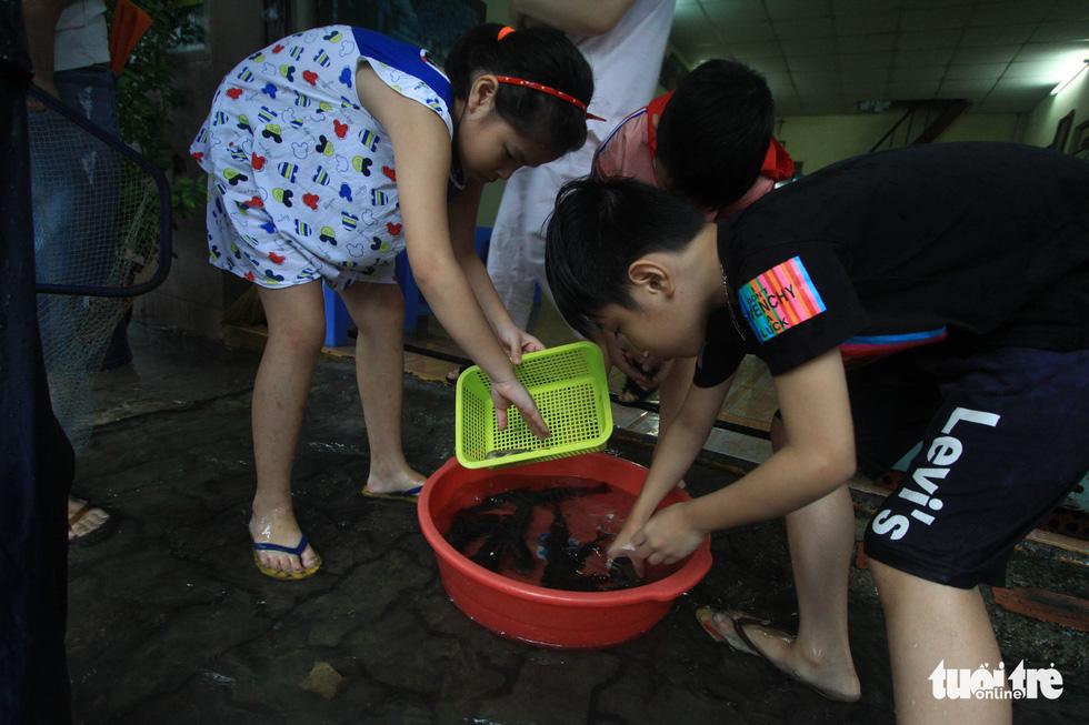 Sau mưa, dân Đà Nẵng nô nức ra đường bắt cá - Ảnh 5.