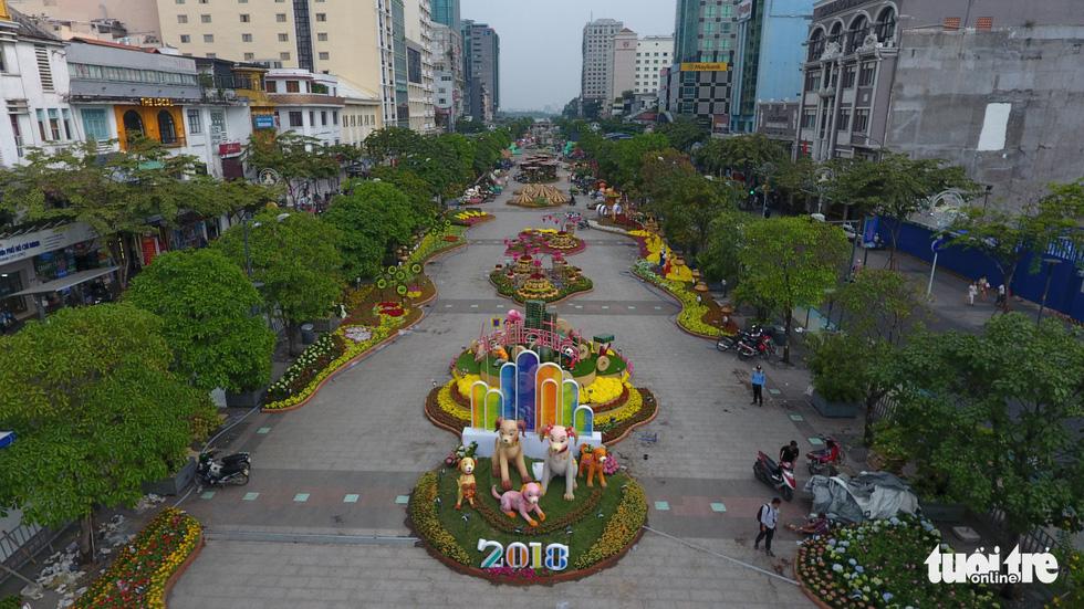 Chó Phú Quốc nổi bật ở đường hoa Nguyễn Huệ - Ảnh 6.