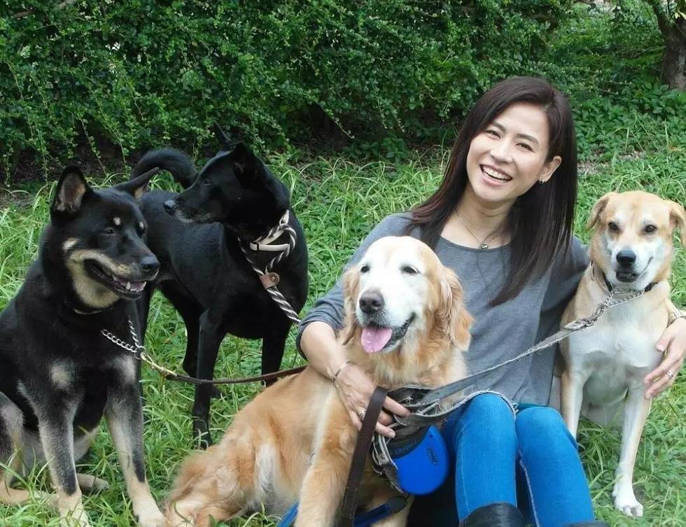 Điểm danh các nghệ sĩ Hoa ngữ tình nguyện làm sen cho chó - Ảnh 3.
