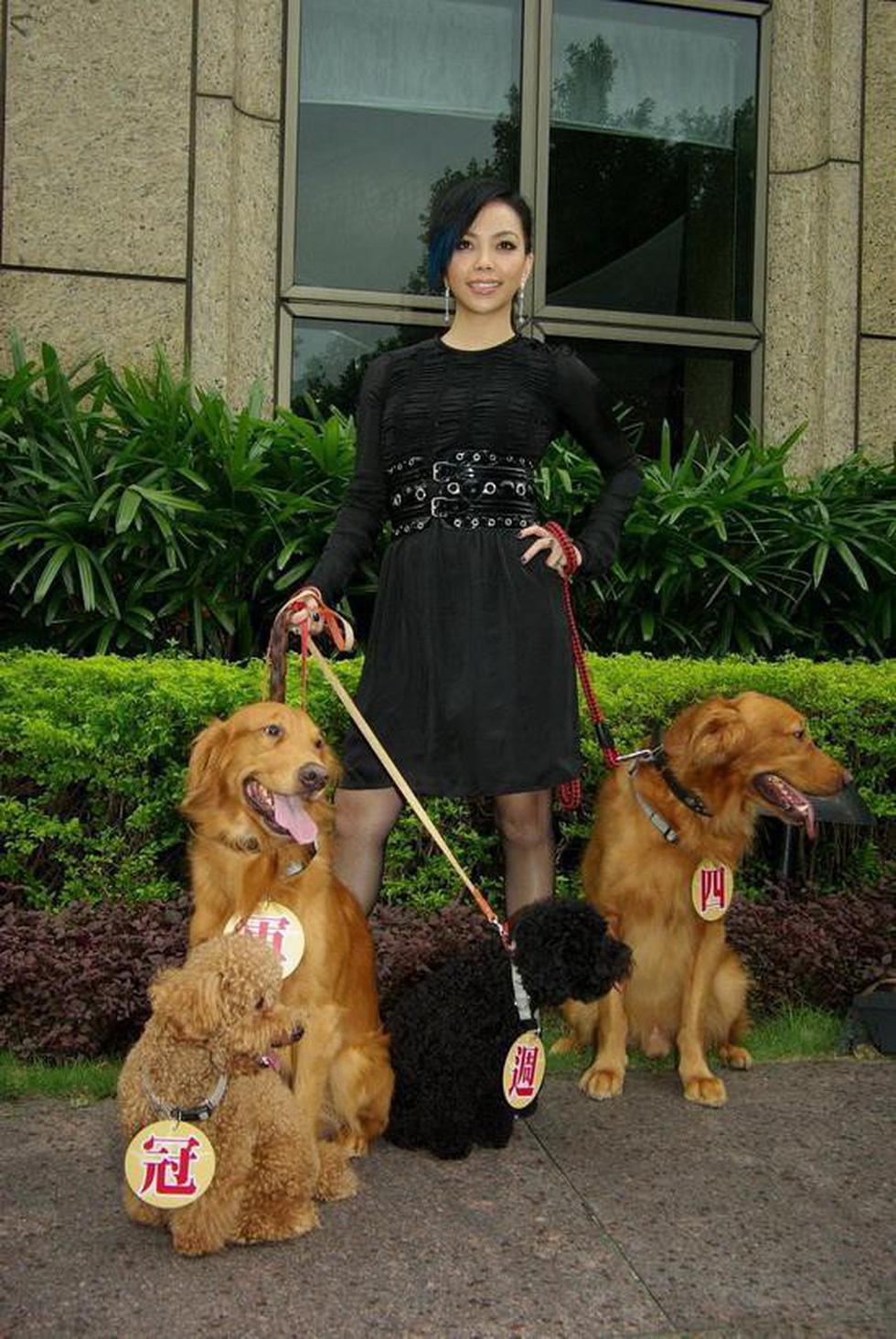Điểm danh các nghệ sĩ Hoa ngữ tình nguyện làm sen cho chó - Ảnh 4.